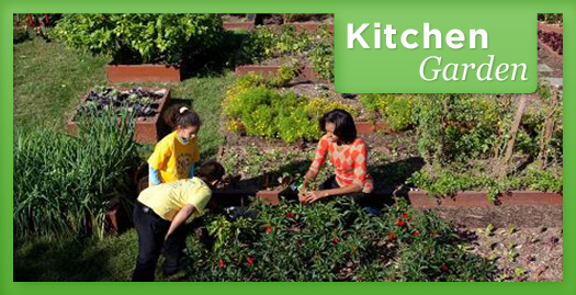 kitchen garden checklist lets move - Garden Kitchen