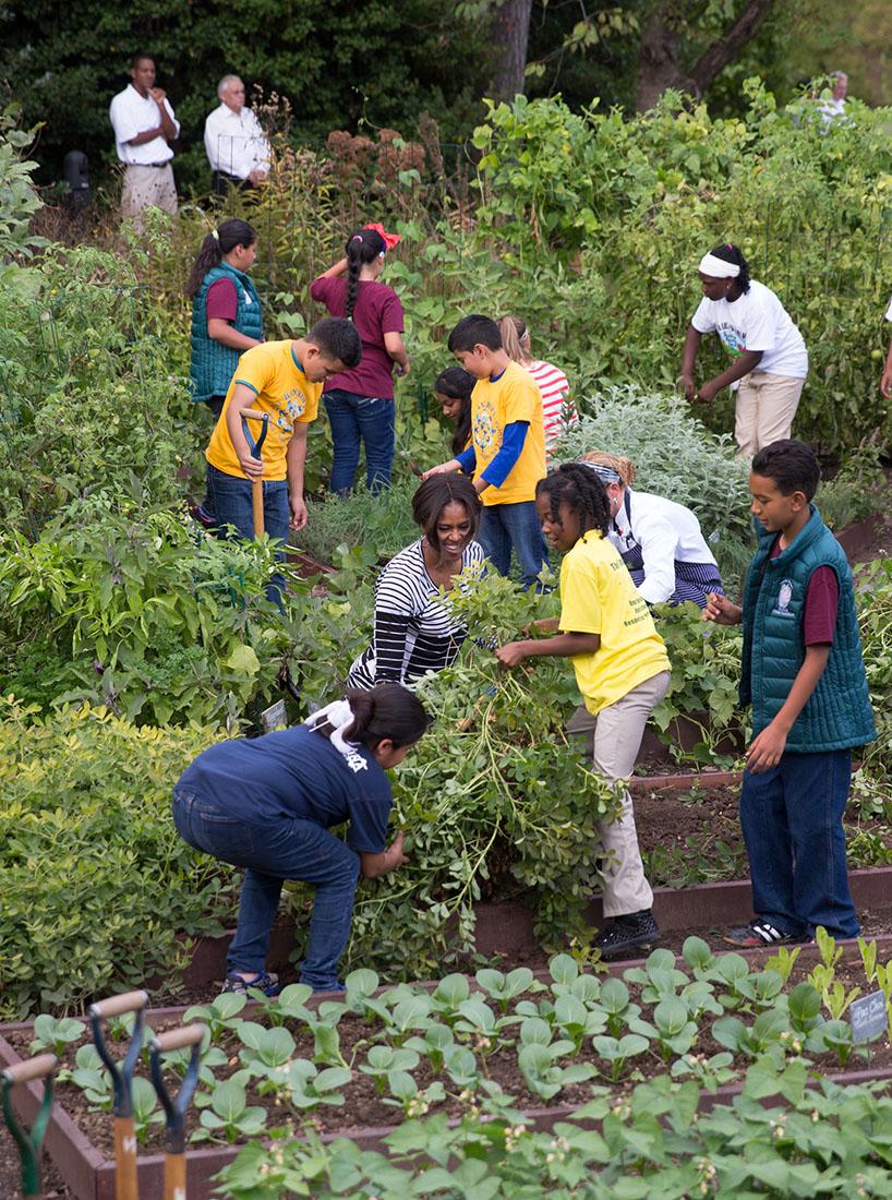 White House Kitchen Garden Garden To Table The Fall White House Kitchen Garden Harvest