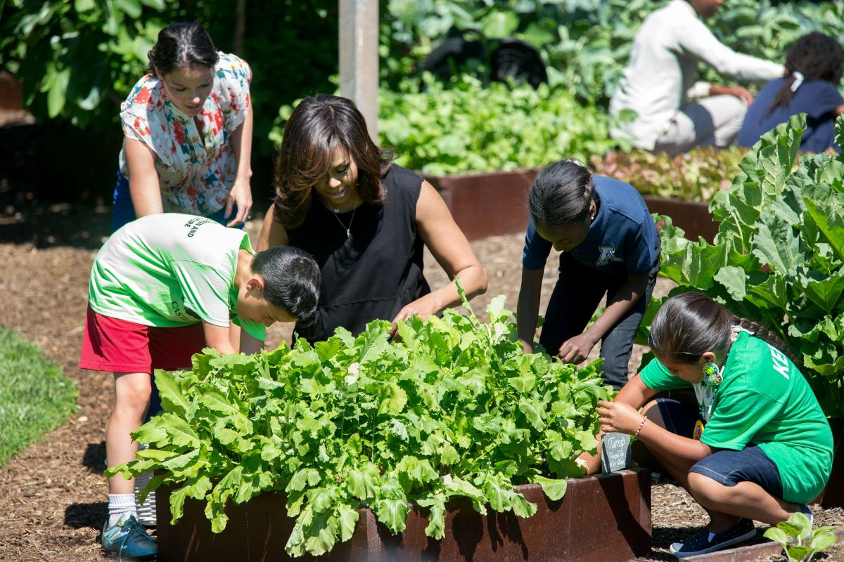 The Spring White House Kitchen Garden Harvest Lets Move